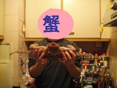091231_kani0(17a).jpg