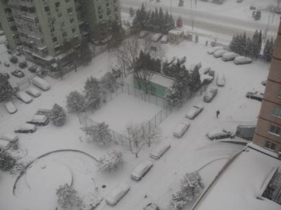 100103_snow(1).jpg
