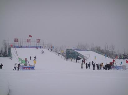 100103_snow(11).jpg