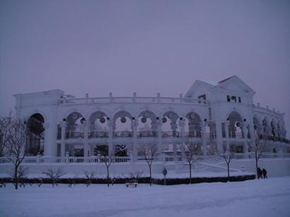 100103_snow(14).jpg