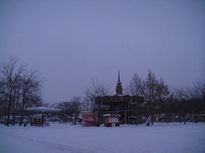 100103_snow(15).jpg
