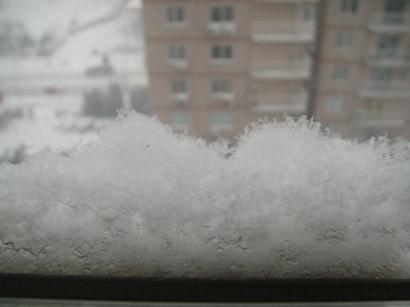100103_snow(2).jpg