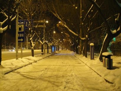 100103_snow(21).jpg