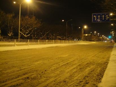 100103_snow(22).jpg