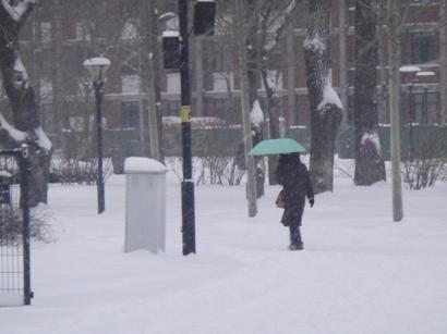 100103_snow(23).jpg