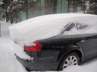 100103_snow(4).jpg