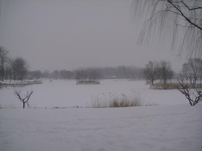 100103_snow(9).jpg