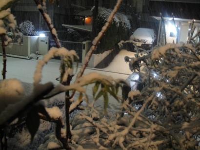 1002_snow.jpg