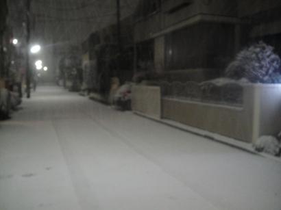 1002_snow (2)