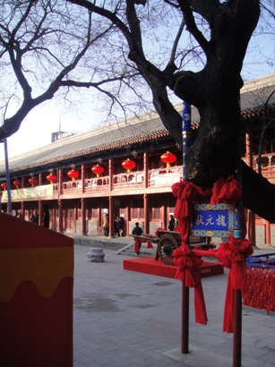 100215_東岳廟(1)