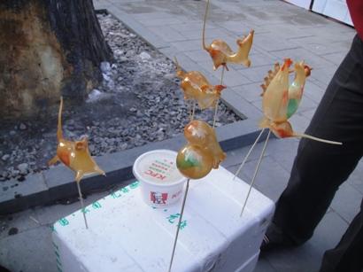 100215_東岳廟(16)