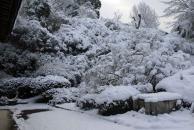 67大雪追加