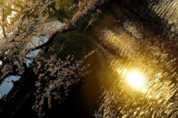 20100724_0008.jpg
