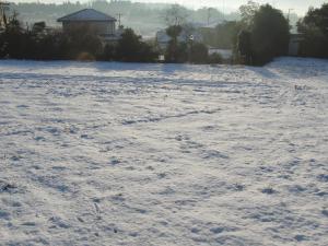 冬 雪 004