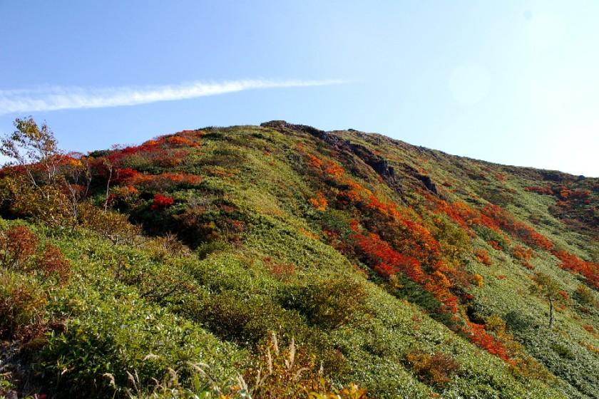 乳頭山の紅葉