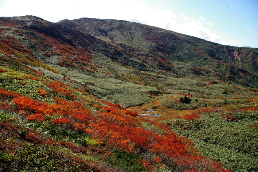 紅葉と笊森山
