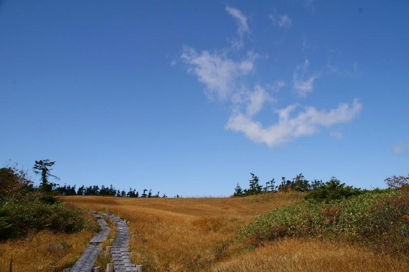 千沼ヶ原の上に青空が広がる