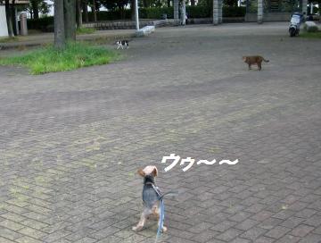 100822(5).jpg