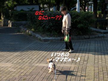 101106(4).jpg