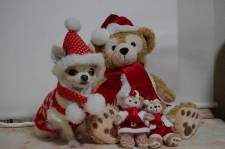 5メリークリスマス