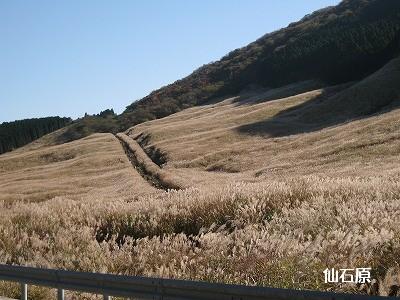真ん中の道が散策コース
