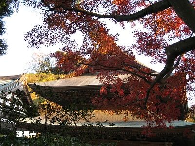 北鎌倉は今が見頃です。