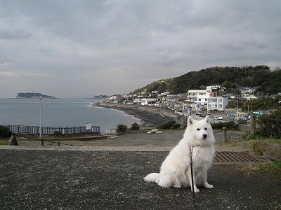 富士山が見えなくて残念!