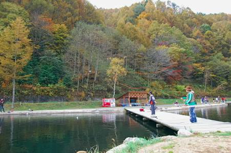 2009-10-25 11-53-17_0017-1