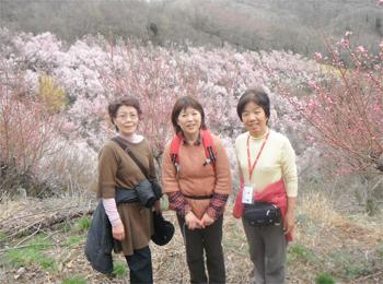花見山ボランティアさん 003