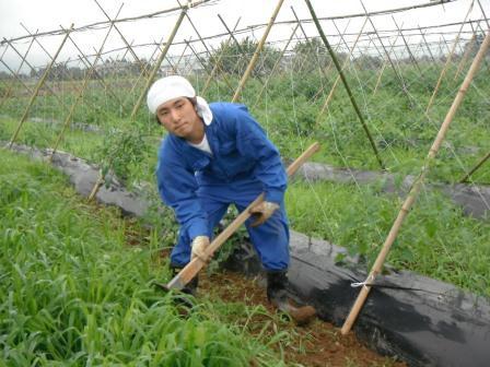 DSCF0279農園2