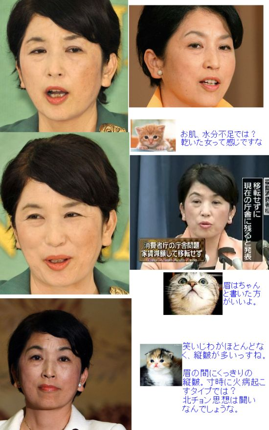 MIZUHOFUKUSHIMAKAO1.jpg