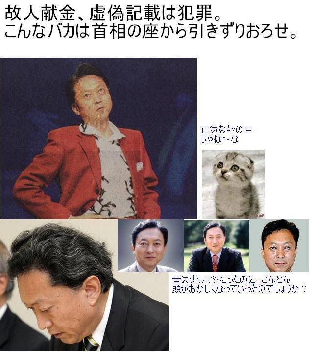 hatoyabataihokigan20090001.jpg