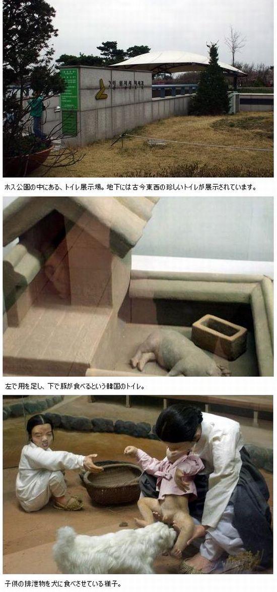 koreahaisetubutu1.jpg