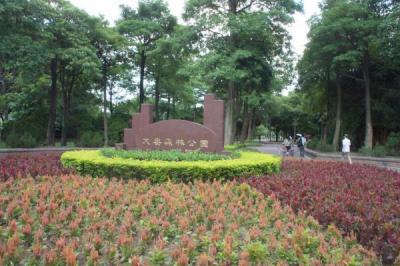 2011-7taiwan-124
