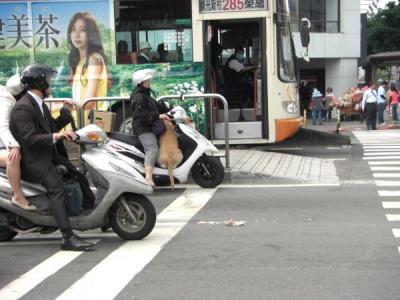 2011.4台湾289