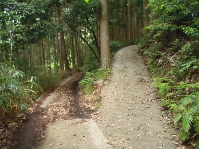2011_0605_151820-P6053979.jpg