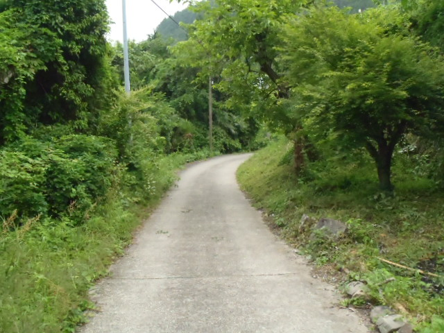 2011_0605_152310-P6053983.jpg