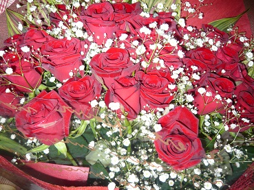 *薔薇がいっぱい*