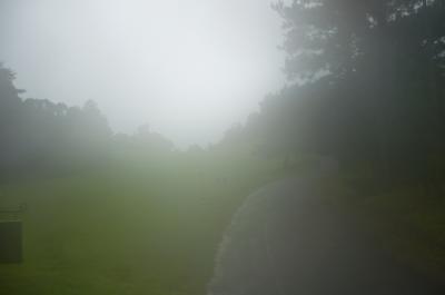 台風ゴルフ