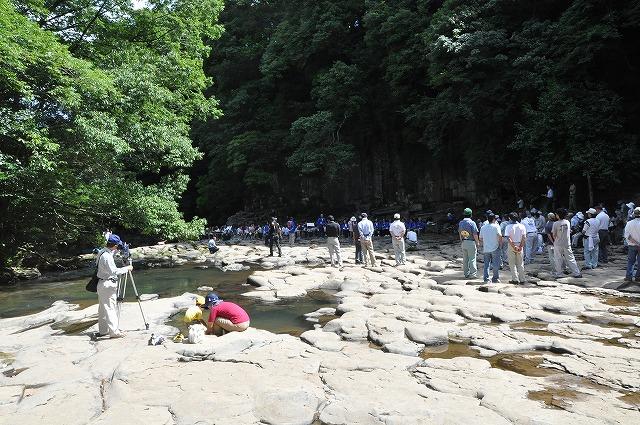 2010龍神002