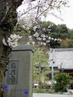 薬王寺と揮毫された門柱