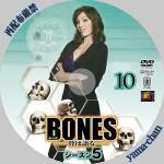 bones510.jpg