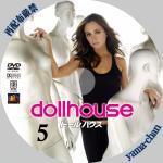 dollhouse05.jpg