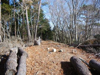 2009-12-13-016.jpg