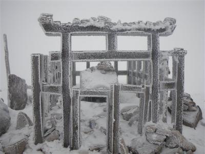 2010-01-10-019.jpg