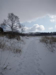 2010-01-10-066.jpg