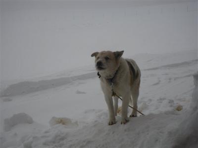 2010-01-10-098.jpg