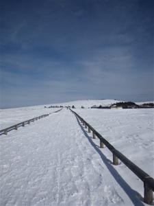 2010-01-11-182.jpg