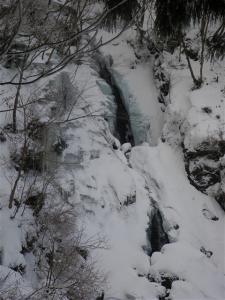 2010-01-17-012.jpg