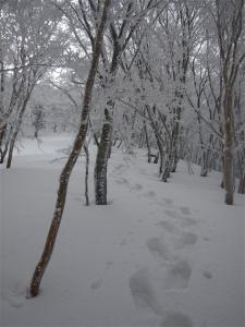 2010-01-17-023.jpg